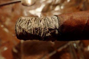 Zigarrenasche im Detail