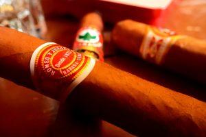 Diverse Zigarren in Nahaufnahme