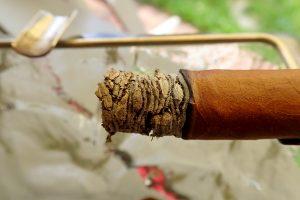 Zigarrenasche