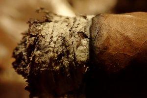 Zigarren Asche